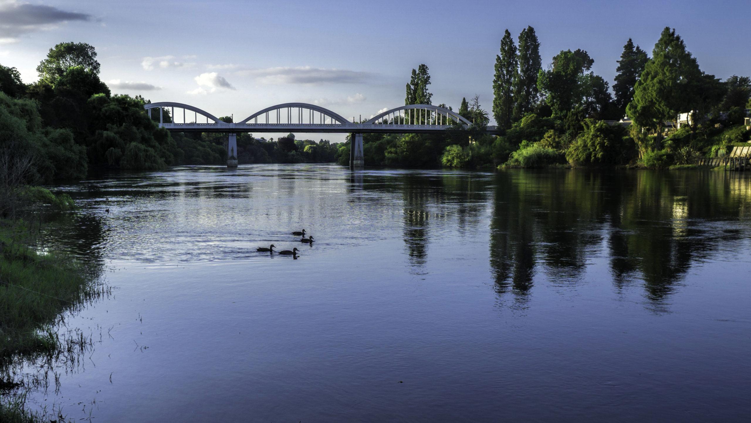 TE AWA THE RIVER:  FLOOR PATTERNING